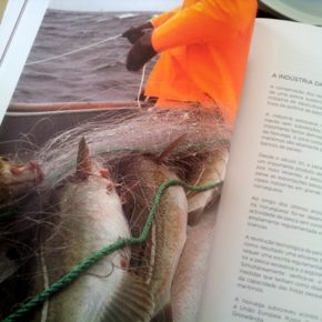 A receitas de bacalhau Vitor Sobral 26