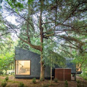 Eco Houses Pedras Salgadas © Fernando Guerra 28