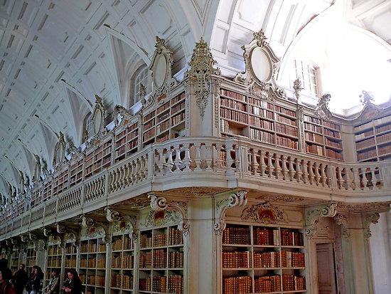 Biblioteca Mafra (1)