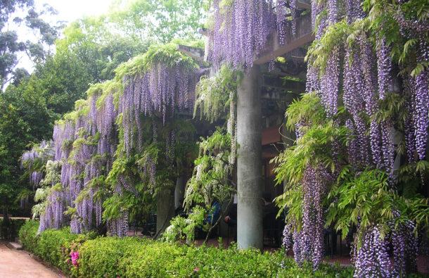 Jardins de Serralves This Weekend 24 A Cidade na ponta dos dedos de Sancha Trindade 3