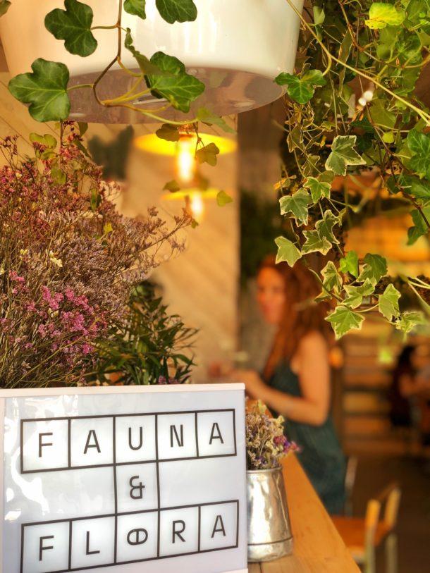 fauna-e-flora-a-cidade-na-ponta-dos-dedos-de-sancha-trindade30
